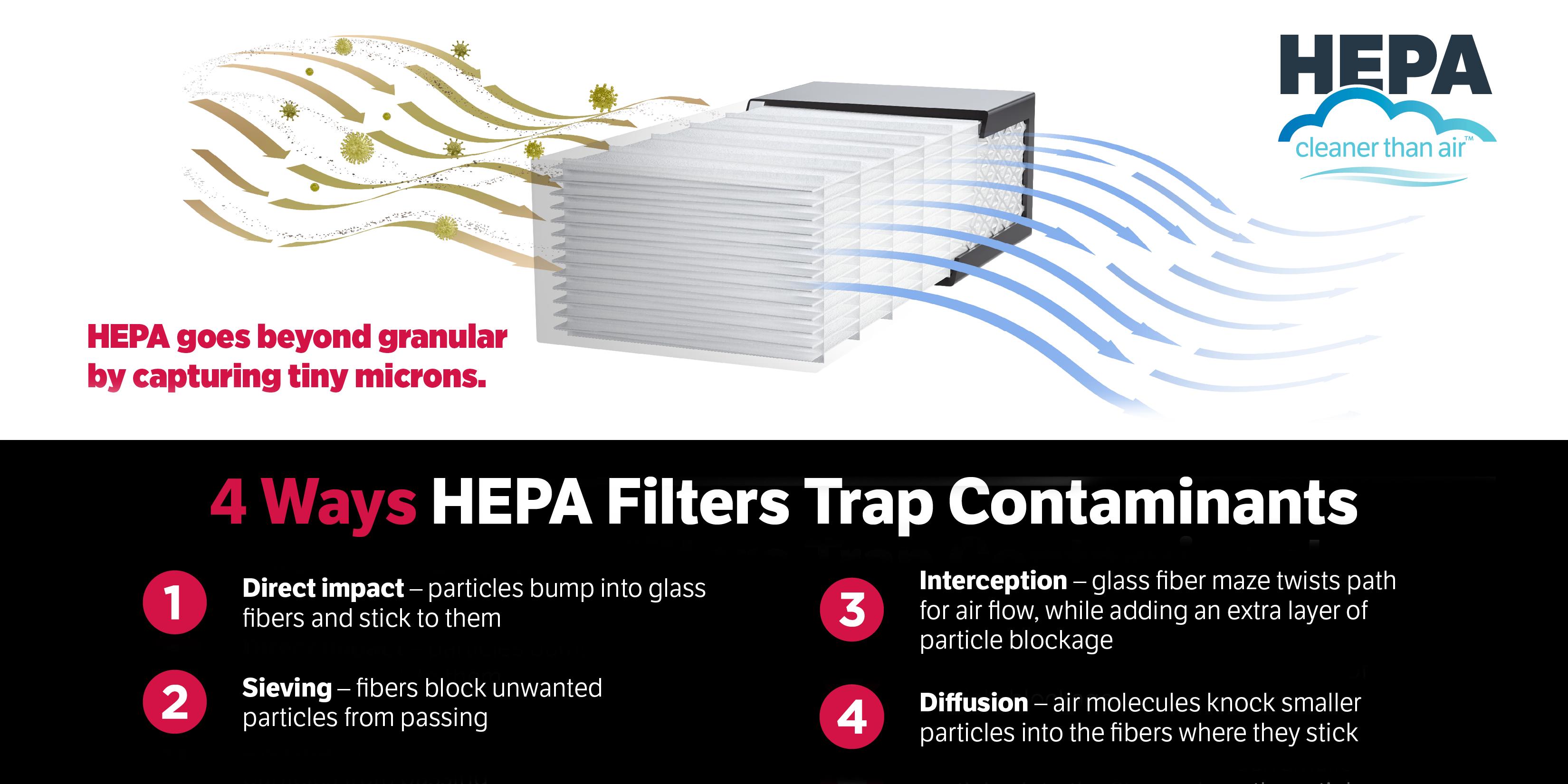 HEPA Infographic
